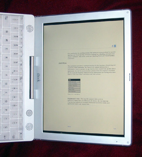 The iBook as a book
