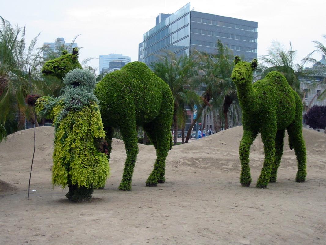 L 39 oasis jardin des sables duba mirats arabes unis for Oasis jardin de cocagne